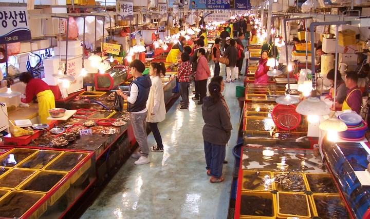 8-Destinasi-Wisata-Menarik-Kota-Busan-Pasar-Jagalchi