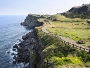 3-Tempat-Wisata-Populer-Yang-Harus-Anda-Kunjungi-Saat-Berlibur-Ke-Korea-Selatan-Jeju-Island