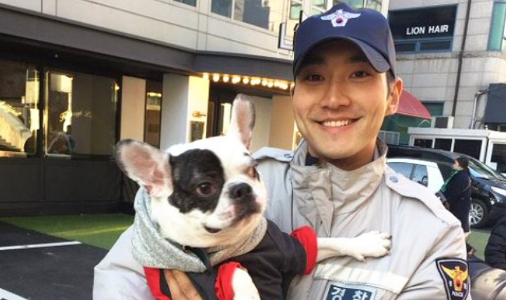 Anjing-Keluarga-Gigit-Tetangga-Hingga-Meninggal,-Siwon-Super-Junior-Minta-Maaf