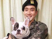 Keluarga-Korban-Putuskan-Tak-Tuntut-Keluarga-Siwon-Super-Junior-Atas-Kasus-Gigitan-Anjing