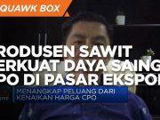 Jurus Produsen Sawit Perkuat Daya Saing CPO di Pasar Ekspor