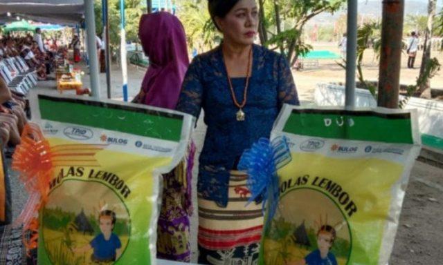 Beras lokal jenis premium Molas Lembor yang diproduksi para petani Lembor di Kabupaten Manggarai Barat, Pulau Flores, Provinsi Nusa Tenggara Timur. Foto: Antara dari BI Perwakilan NTT